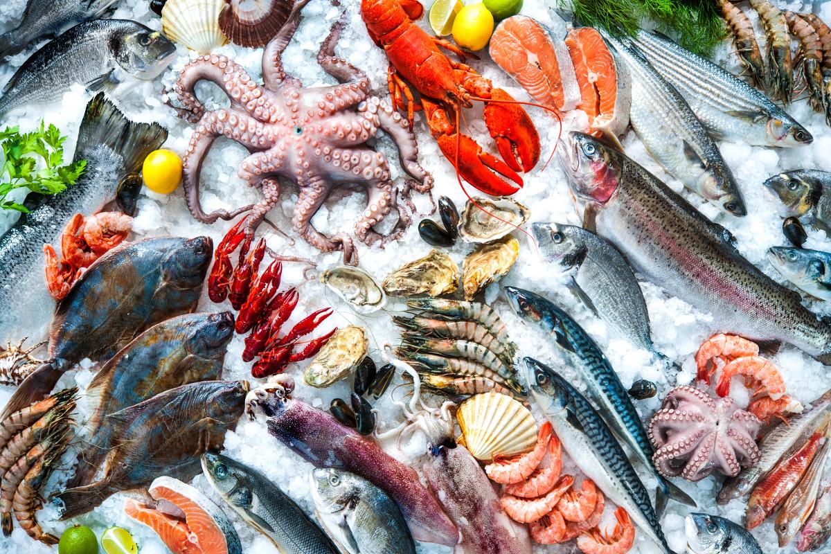 seafood-Zo